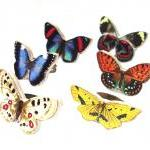 Wooden Butterfly Rings - Go..